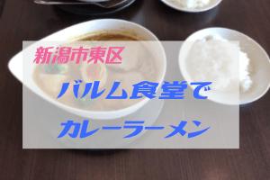 新潟市東区バルム食堂のカレーラーメン