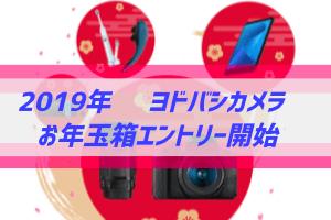 2019年ヨドバシカメラお年玉箱エントリー開始