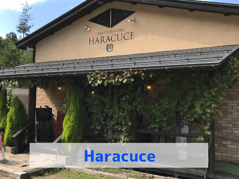 月岡のわくわくファーム、ハラクチェ trattoria ora haracuceの正面玄関