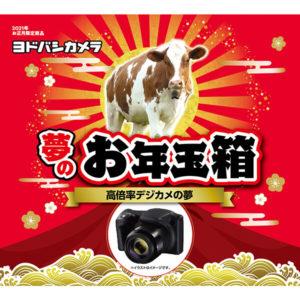 高倍率デジカメの夢が2021年のヨドバシカメラのお年玉箱として販売開始