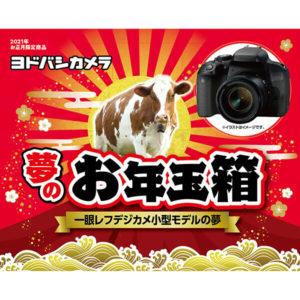 一眼レフデジカメ小型モデルの夢が2021年のヨドバシカメラのお年玉箱として販売開始