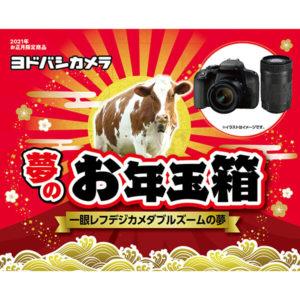 一眼レフズームデジカメダブルズームの夢が2021年のヨドバシカメラのお年玉箱として販売開始