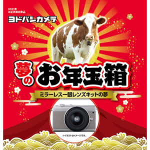 ミラーレス一眼レンズキットの夢が2021年のヨドバシカメラのお年玉箱として販売開始
