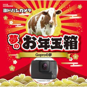 GoProの夢が2021年のヨドバシカメラのお年玉箱として販売開始