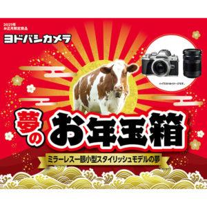 ミラーレス一眼小型スタイリッシュモデルの夢が2021年のヨドバシカメラのお年玉箱として販売開始