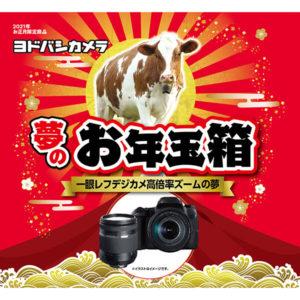 一眼レフデジカメ高倍率ズームの夢が2021年のヨドバシカメラのお年玉箱として販売開始