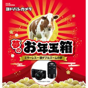 ミラーレス一眼ダブルズームの夢が2021年のヨドバシカメラのお年玉箱として販売開始