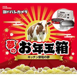 キッチン家電の夢が2021年のヨドバシカメラのお年玉箱として販売開始