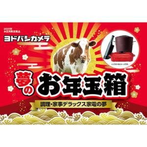調理・家事家電デラックスの夢が2021年のヨドバシカメラのお年玉箱として販売開始
