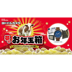 メンズカジュアルウォッチの夢が2021年のヨドバシカメラのお年玉箱として販売開始