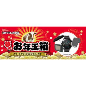 スマートウォッチビジネスの夢が2021年のヨドバシカメラのお年玉箱として販売開始
