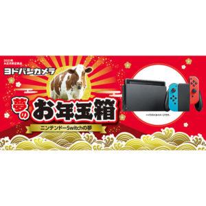 ニンテンドーSwitchの夢が2021年のヨドバシカメラのお年玉箱として販売開始