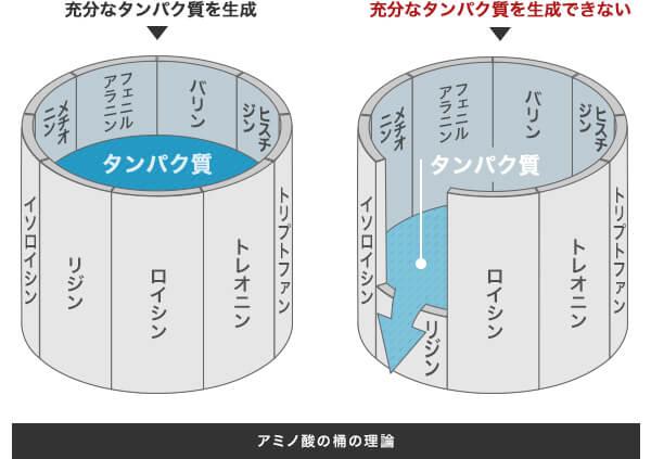 必須アミノ酸と断熱性能の関係、新潟県での家づくりをダイエープロビスグリーンハウスに依頼する